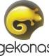 Gekonas - žūklės reikmenys